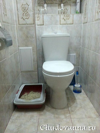 remont-vannoj-komnaty-i-tualeta-6