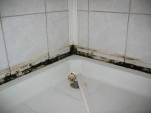 как убрать плесень в ванной