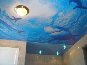 Принтованные натяжные потолки для ванной